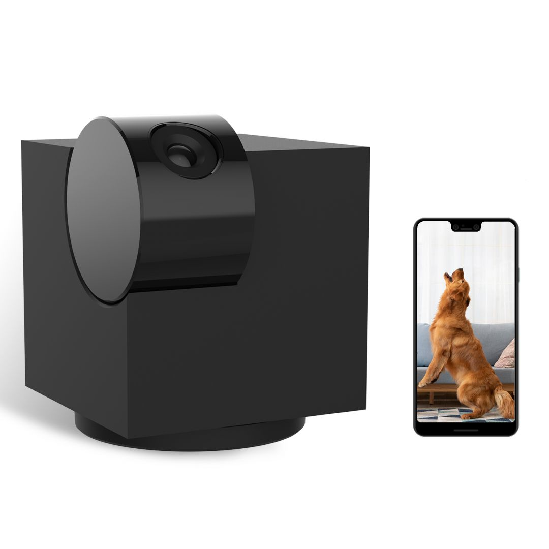 Laxihub P1 Indoor Pan Tilt Zoom Privacy Wi-Fi Camera (P1)